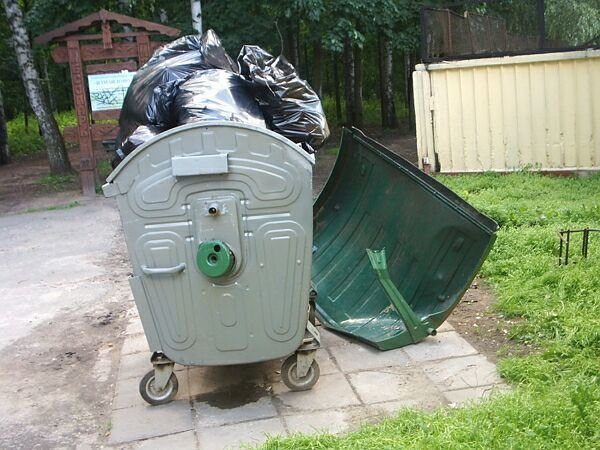 В Москве в мусорном контейнере обнаружено тело младенца