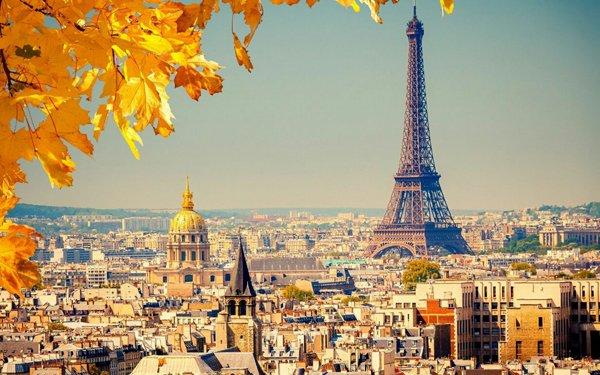 Во Франции принято решение постепенно откатить санкции по отношению к Российской Федерации