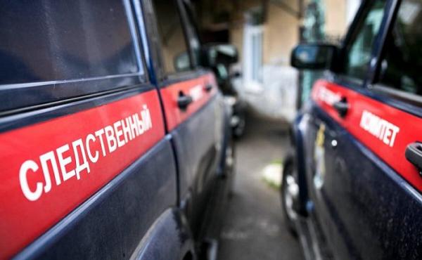 Следователи выясняют, кто утопил ребенка в биотуалете в Саратовской области