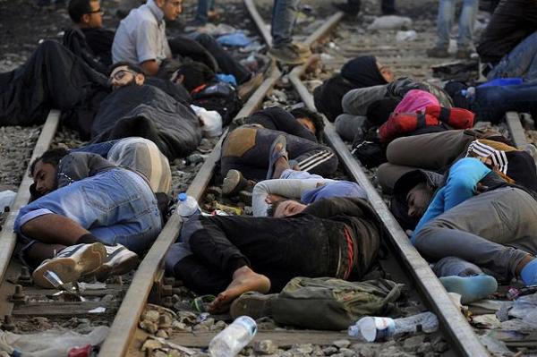 В Европе беженцы на грани вымирания