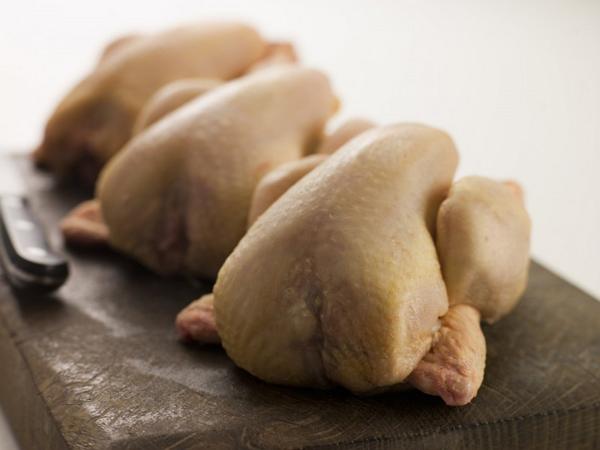 Курица российских производителей опасна для жизни