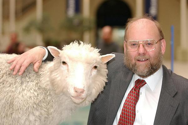 Ученый, клонировавший овечку Долли, заболел болезнью, от которой хотел спасти мир