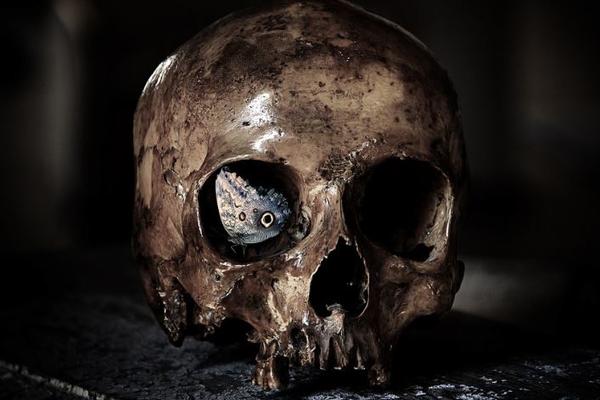 В Англии была найдена могила вампира
