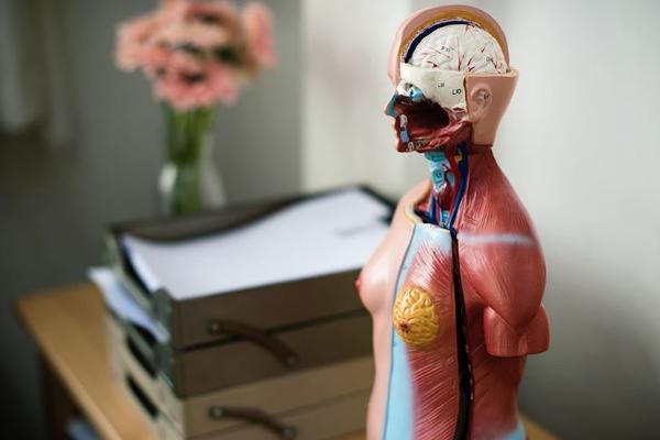 Как распознать онкологию: врачи назвали явные признаки