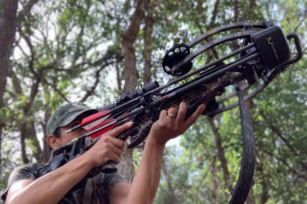 Лук и арбалет разрешили использовать для охоты в России