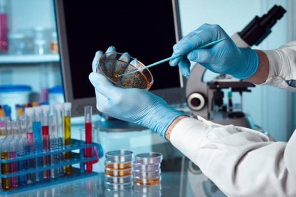Стали известны вирусы, провоцирующие развитие онкологии