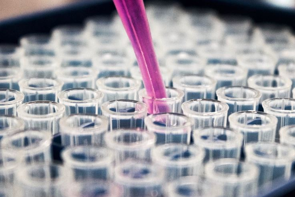 Онколог из Германии рассказал о самом эффективном методе борьбы с онкологией