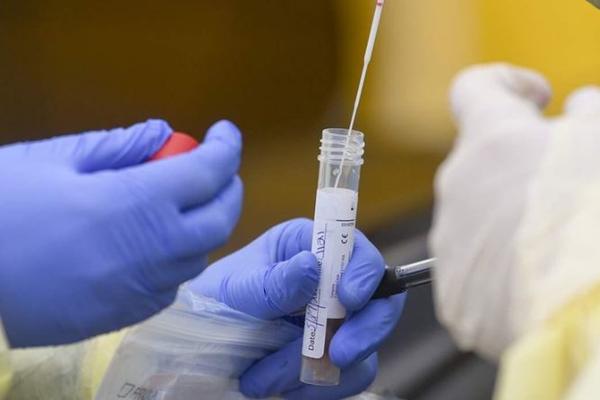 У коронавируса появилась новая опасная мутация