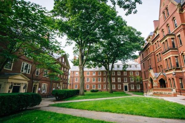 Профессора Гарварда подвергли критике за фразу о существование только двух полов